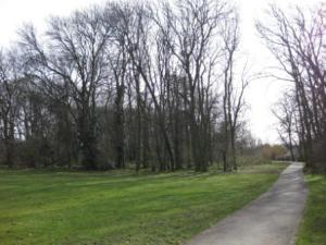 Holly Oak Wood Park in 2010